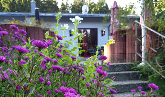 WALDHOTEL RENNSTEIGHÖHE & BUNKERMUSEUM Ilmenau