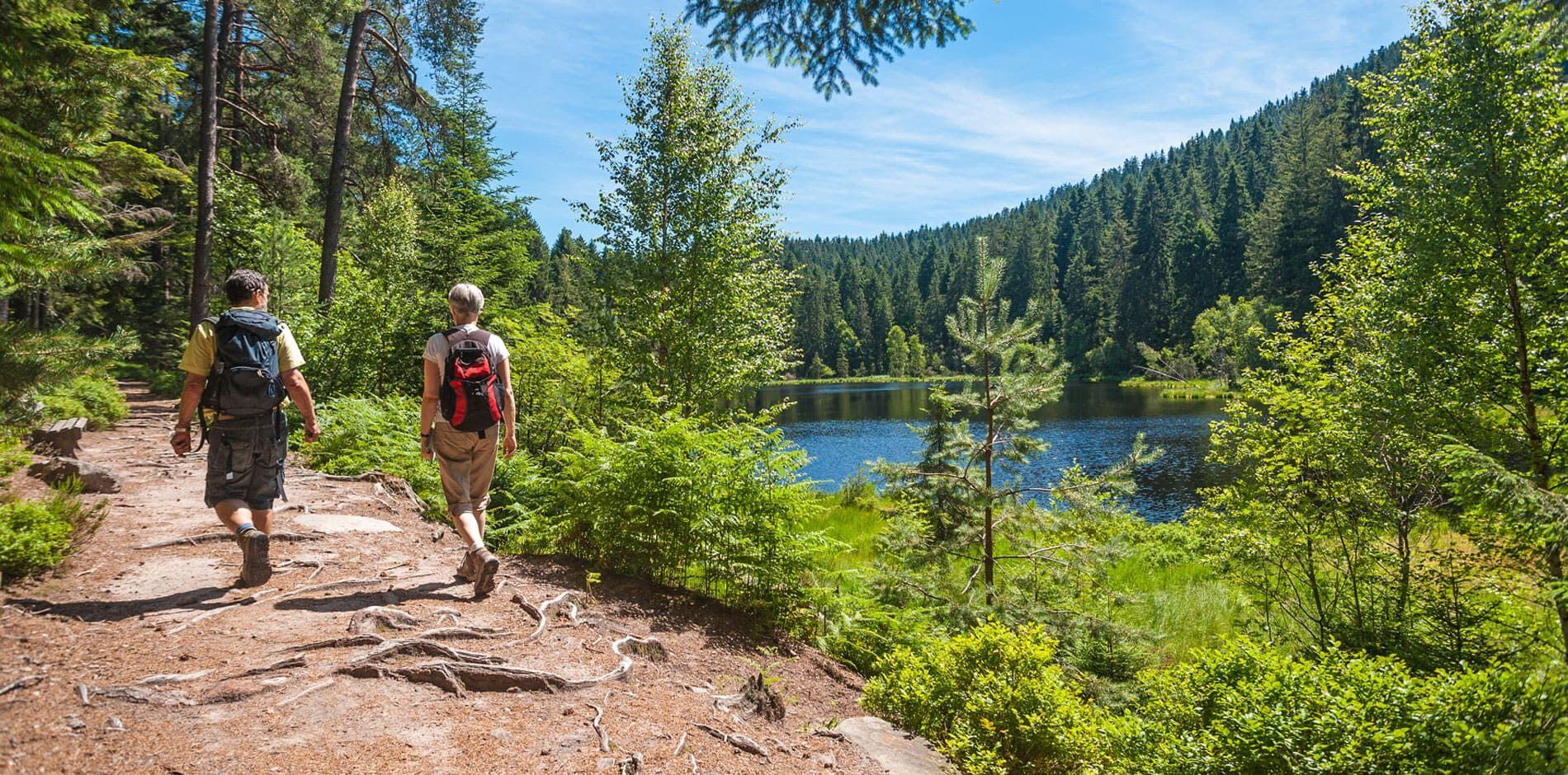 Vacances de randonnées en Belgique avec daydreams