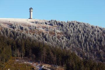 HOTEL TANNHOF FELDBERG Feldberg (Schwarzwald)